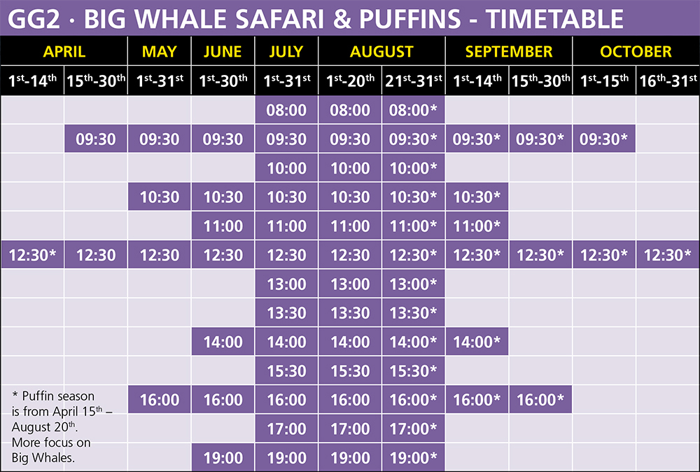 Big Whale Safari & Puffins, RIB Whale Watching Timetable, Húsavík, Iceland